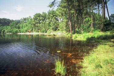 camping aan meer