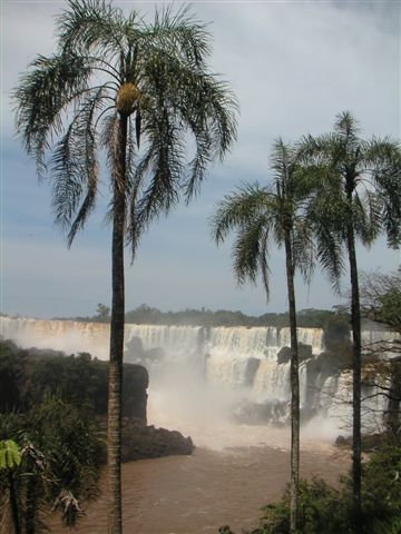 palmbomen watervallen Iguazu