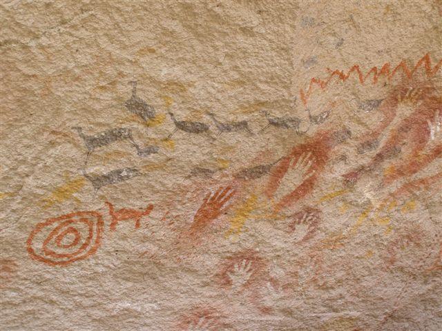 Cuevas de los Manos - dieren