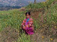 Nepali girl village near Pokhara
