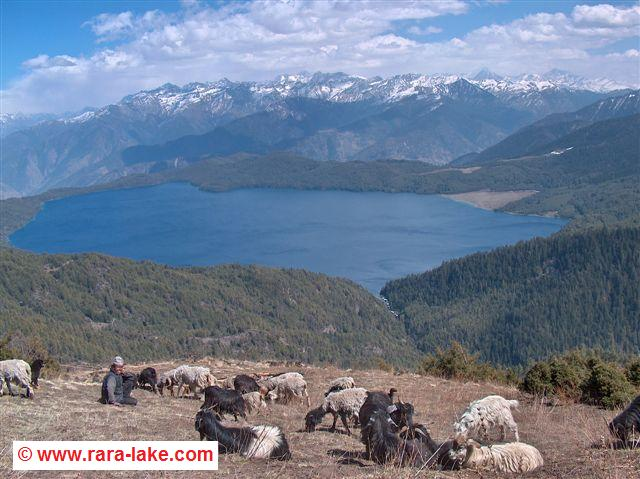 View over Rara Lake from Murma Top